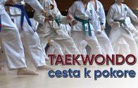 SENEC.TV – TAEKWONDO: CESTA K POKORE