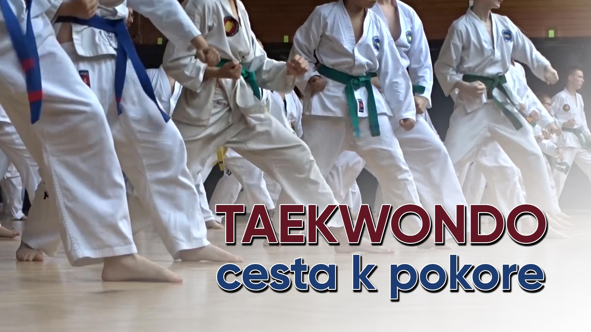 SENEC.TV – TAEKWONDO  CESTA K POKORE  1676556a70c