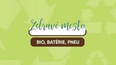 bio-bat-pneu